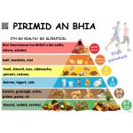 foodpyramid-irish-500x500
